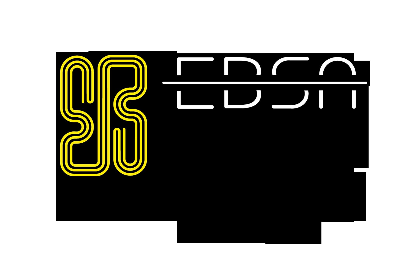 logo Ebsa